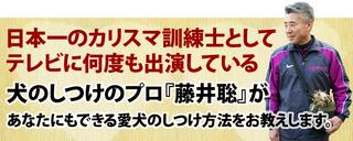 fujii-top.jpg